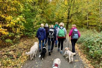 Wanderung Oktober 2020 | Copyright: ZC Goslar